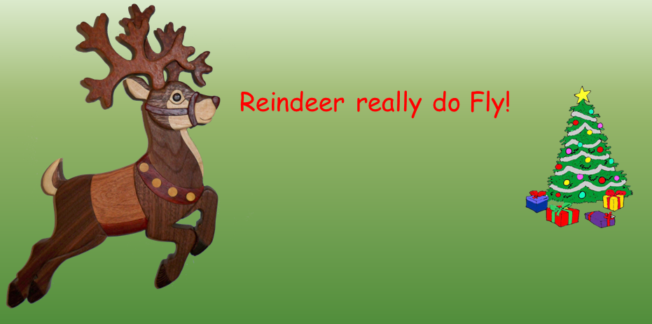 Holiday Auction – Santa's Reindeer!